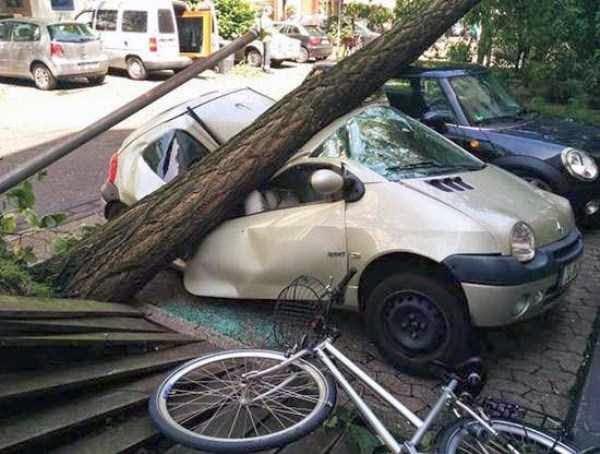 copac pe masini